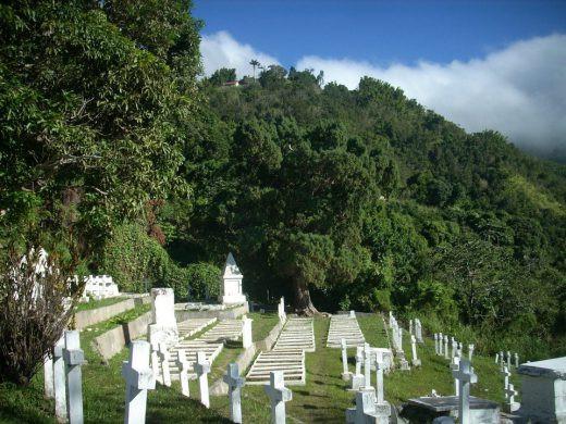 Graveyard in Newcastle, Kingston