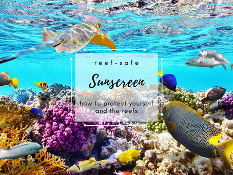 Reef-Safe Sunscreen: How to Protect Yourself and the Reefs