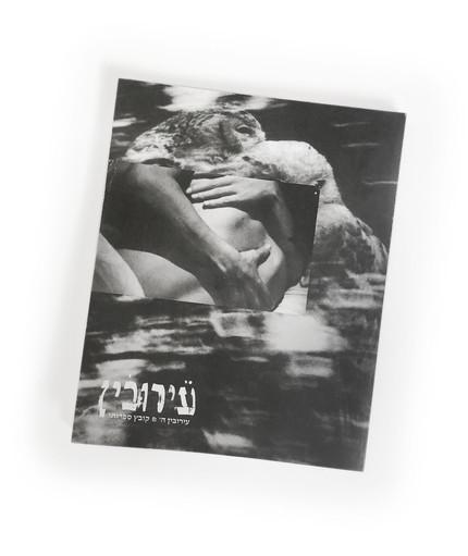 Eyruvin, Literary Arts. V.5 (cover), 2020