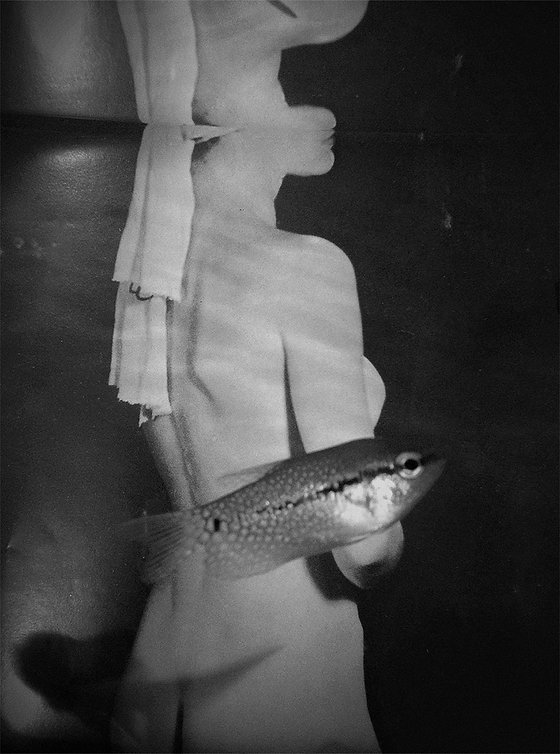 Dana-Darvish_Fish_Man-Ray01.jpg