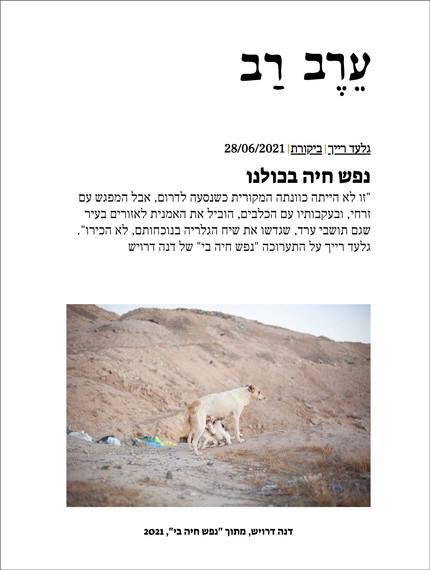 Review by Gilad Raich | Erev Rev Magazine, 2021