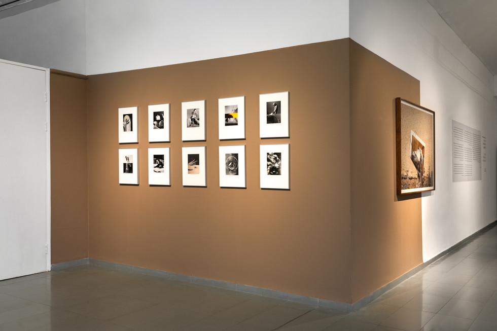 Actual Animals, Installation View, Arad Contemporary Art Center, 2021