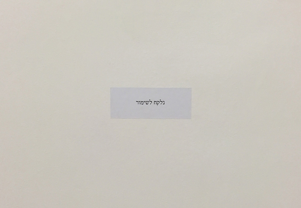 Untitled (״Taken for Conservation״) Sticker on the wall, 2015