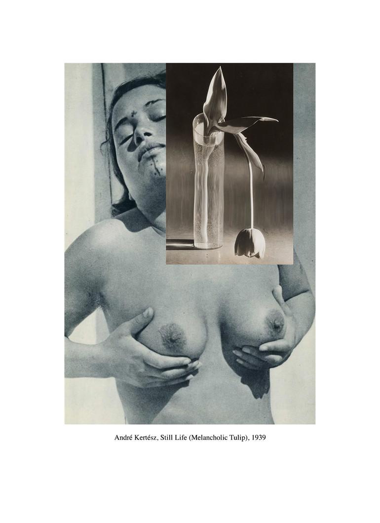 Dana-Darvish_André-Kertész,-Still-Life-(