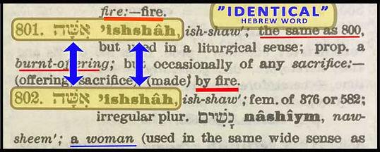 Hebrew H801-H802 - 002.jpg