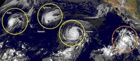 Trio of Whirlwinds.jpg