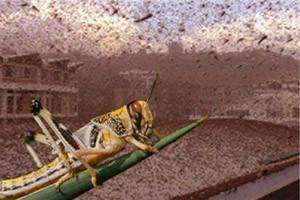 BIBLICAL PLAGUE HITS RUSSIA : Locust swarm blots out sun