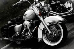 bikerpics25.JPG