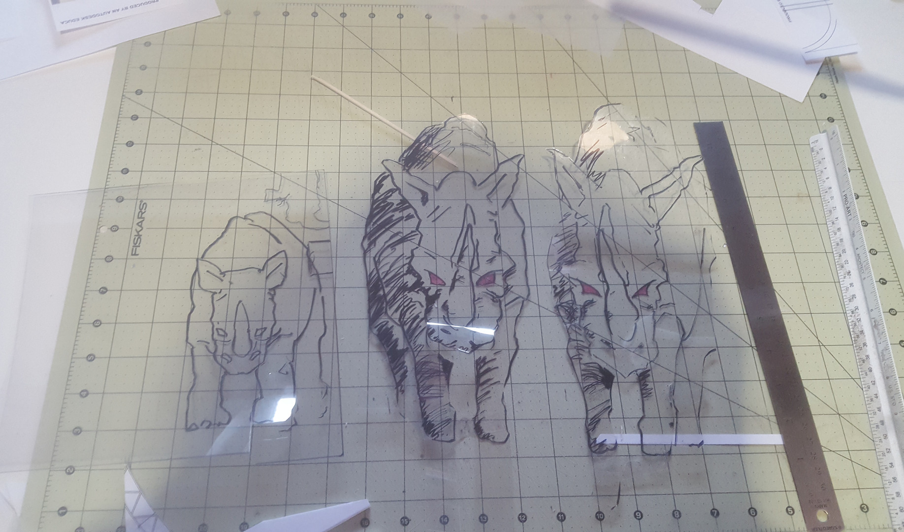 RHINO TRANSPARENCIES