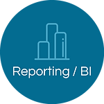Reporting_BI.png