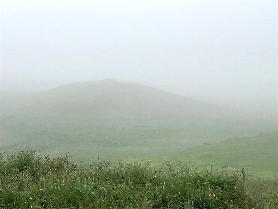 Svar i tågen.jpg