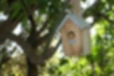 Jeûne Nature, agrée FFJR - des stages Jeûne et Randonnée ®