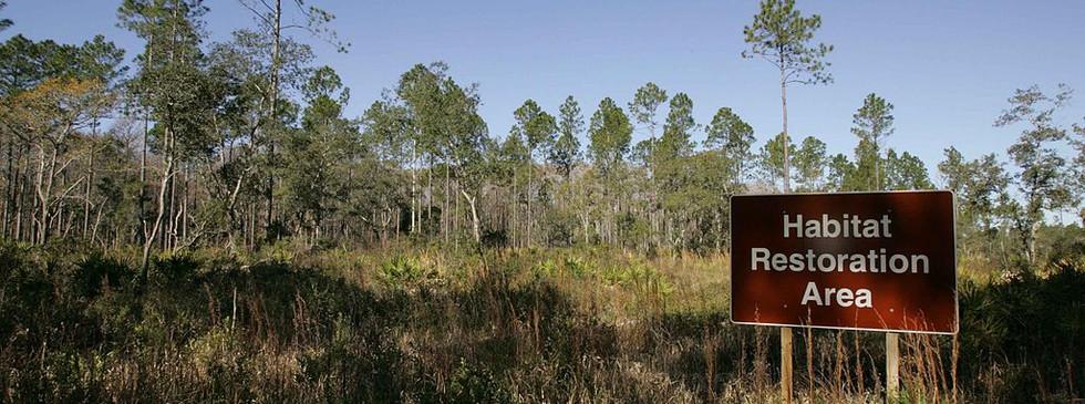 1024px-Habitat_restoration_area_sign.jpg