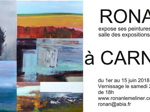 Expo à CARNAC