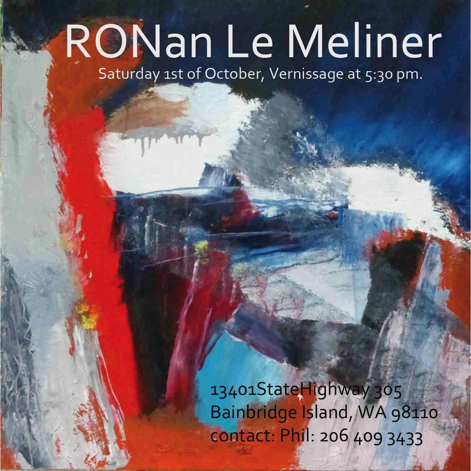Ronan LE MELINER