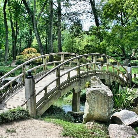 bridge-53769__480.jpg