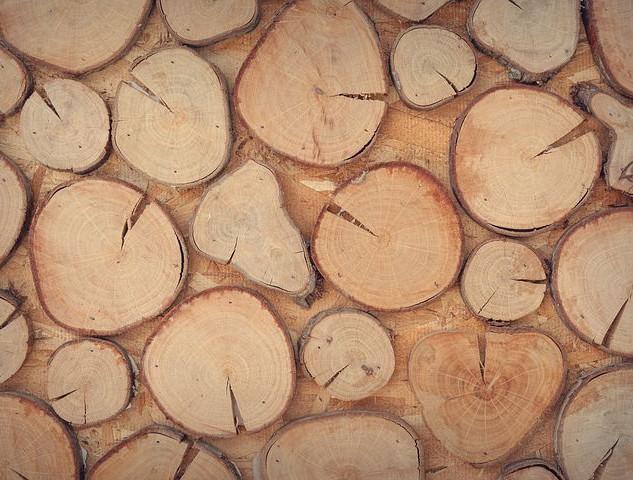 wood-1866642__480.jpg