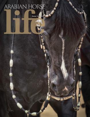 Arabian Horse Life Mini Issue 5 2017