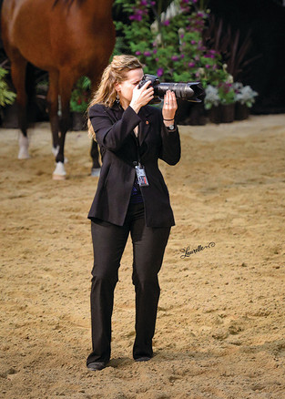 Horsin' Around - Equine Careers