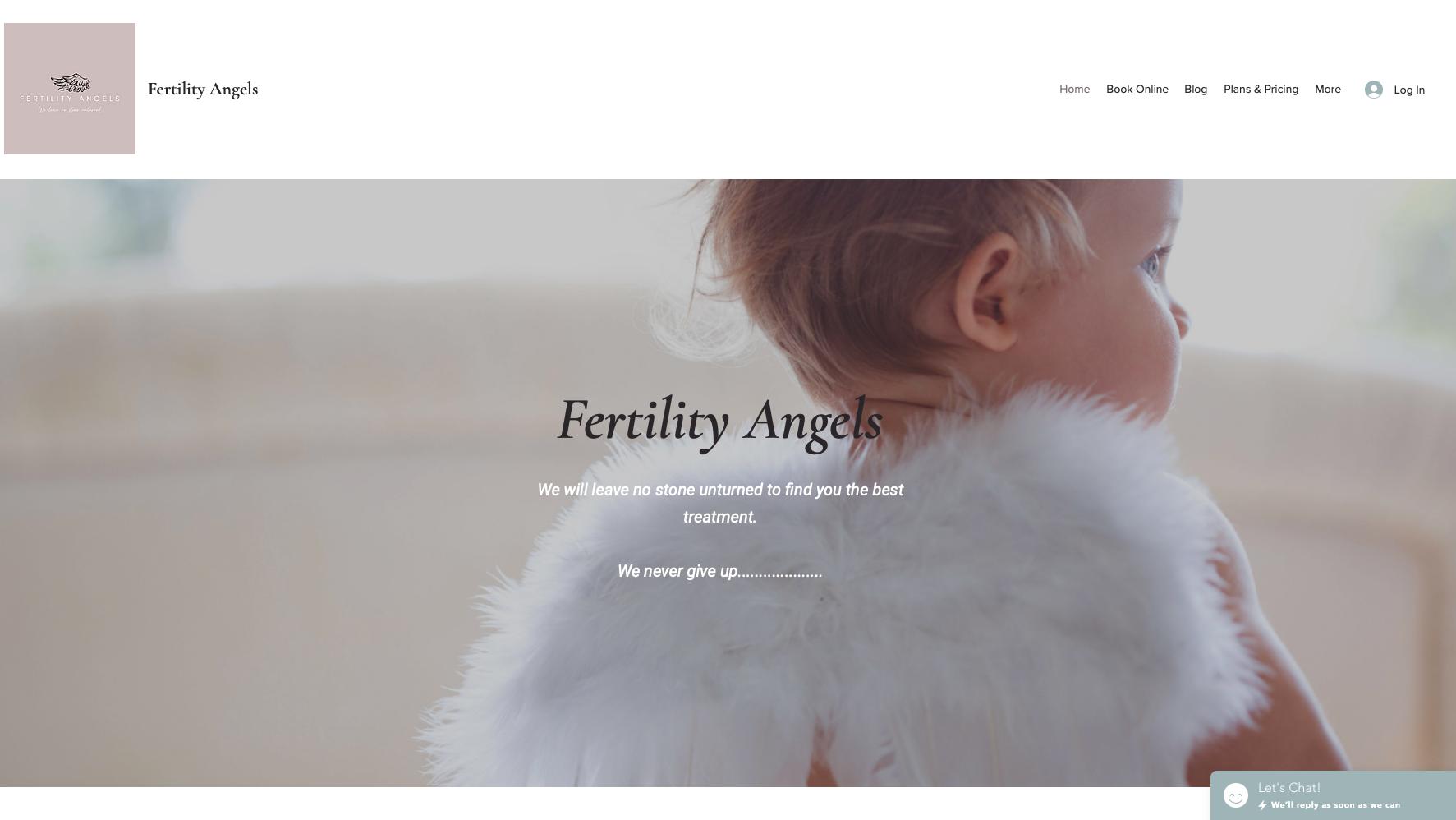 Fertility Angels