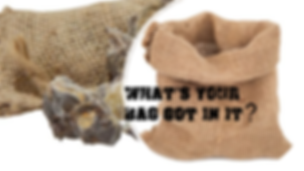 What's Your Bag Got in It.png
