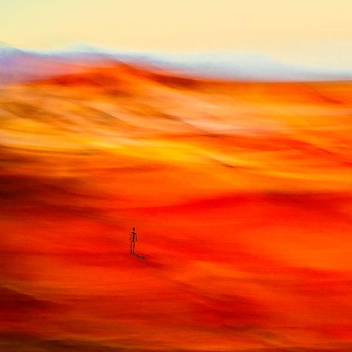 'Spirit Painted Desert'