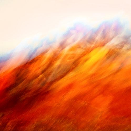 'Painted Desert'