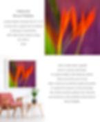 Bruce Peebles Heliconia 2.jpg