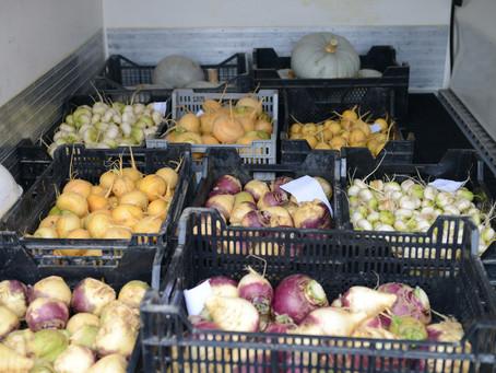 Nouveau site internet pour nos légumes !