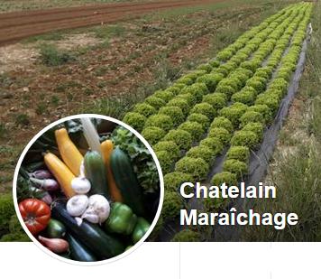 Suivez pas à pas la production de nos légumes !