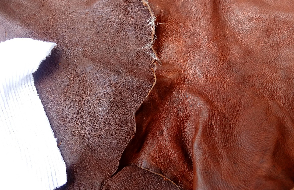 Squirrel leather tanned with white oak bark (Quercus alba) & black oak bark (Quercus velutina)