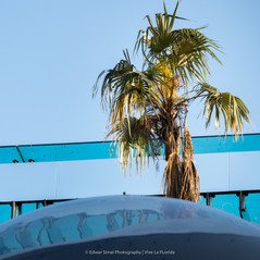 Edwar Simal Photography-0749.jpg