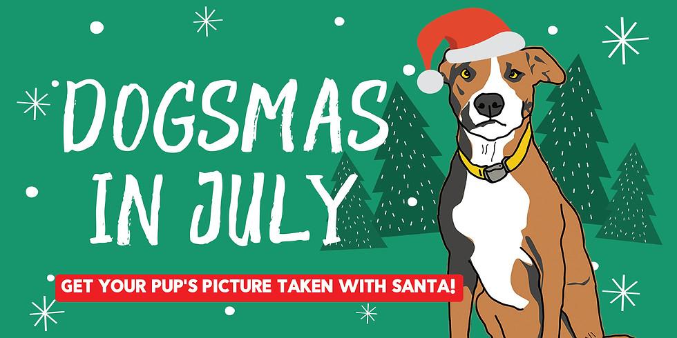 Dogsmas in July