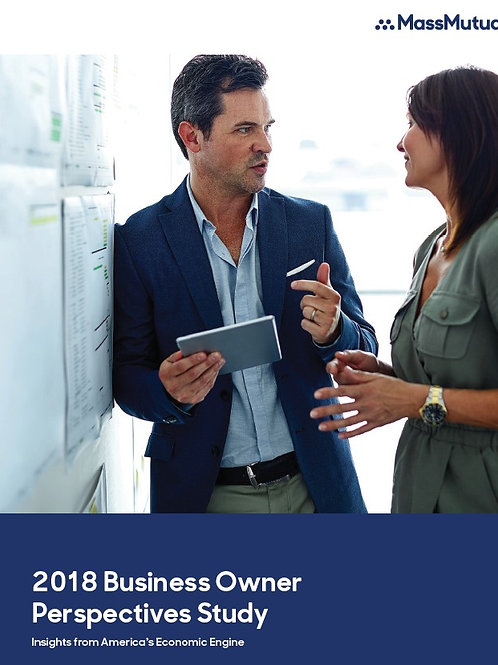 2018 Business Owners Perspective Study