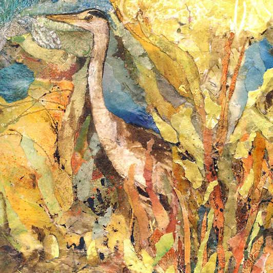 Inqusitive Heron