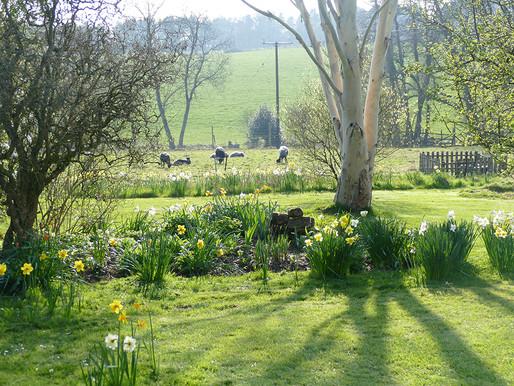 Painting in a Dorset Garden