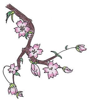 PSE.Sakura.new.version.2.white.jpg