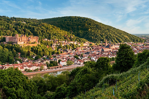 """Heidelberg """"Panorama Philosophenweg"""""""