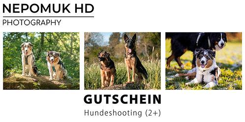 Gutschein: Hundeshooting (2+ Hunde)