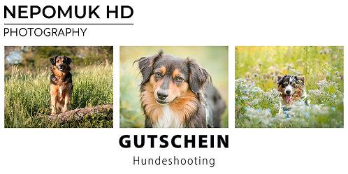 Gutschein: Hundeshooting