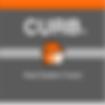 CURB logo 3.png