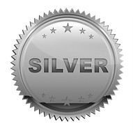 silver_PNG17190.png