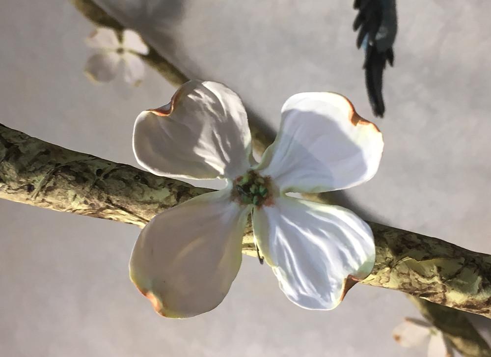 Life-Size Polymer Clay Dogwood Blossom