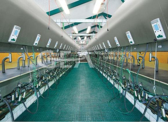 Доильный зал Бок-о-Бок Global 90i