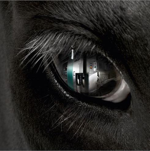 Глаз.JPG