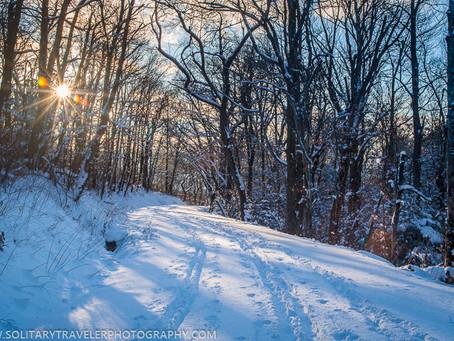 A Spot Of Winter