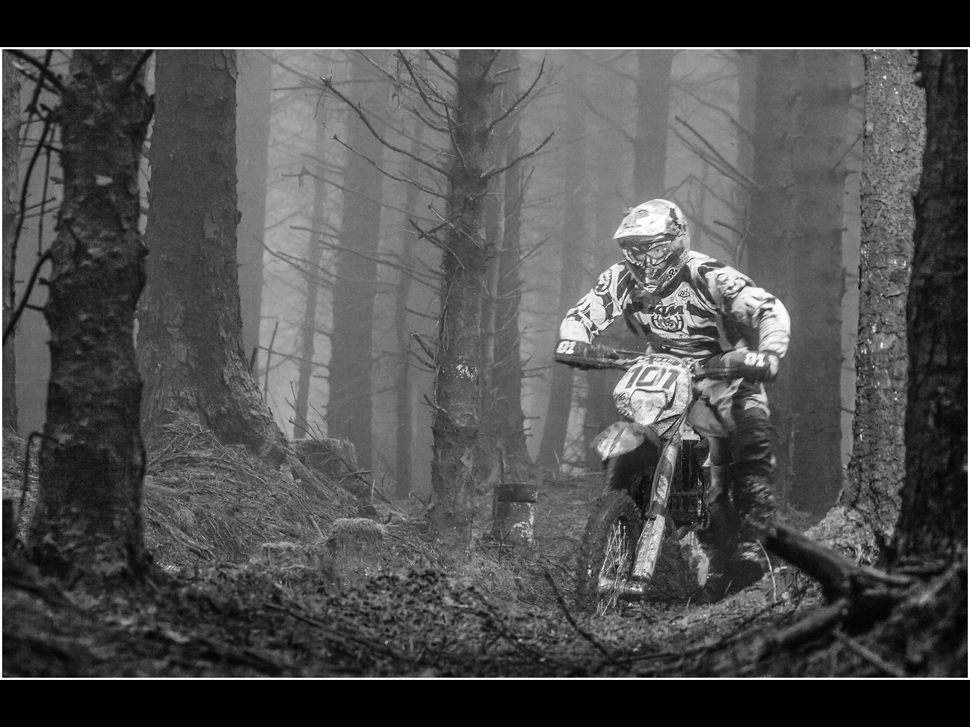 Enduro in the Forest.jpg