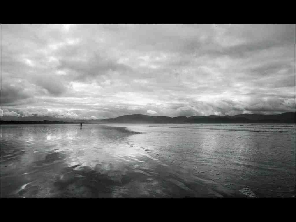 A Walk at low Tide