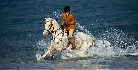 33 Cabbyl Ushtey (Water Horse).jpg