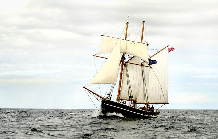 Full Sail By Doreen Kelly